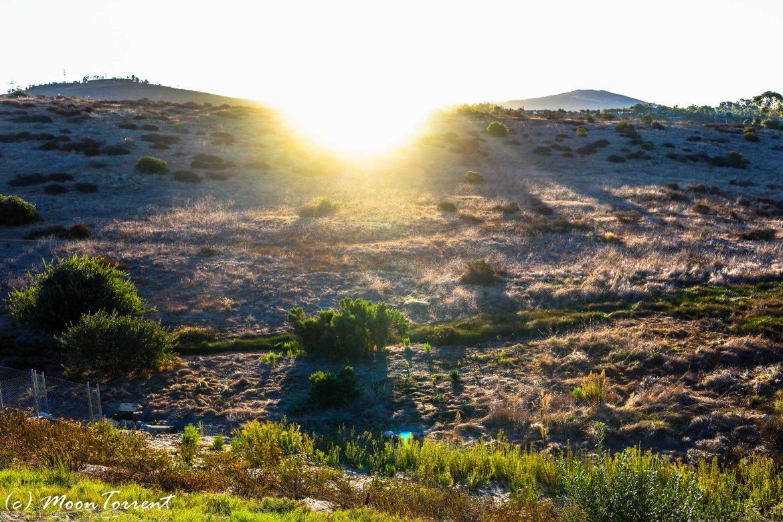 sunrise-la-costa-canyon-102